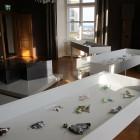Ausstellung St.Martin Vitrinen Graz